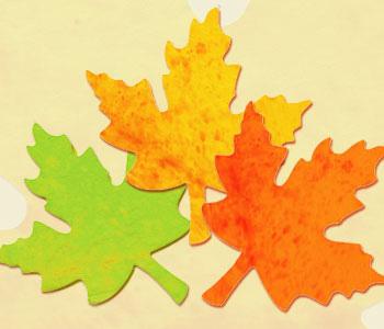 leaveschangingcolor