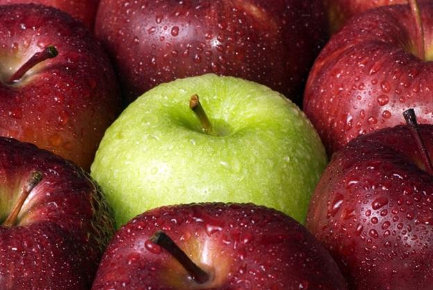 apples one green.jpg