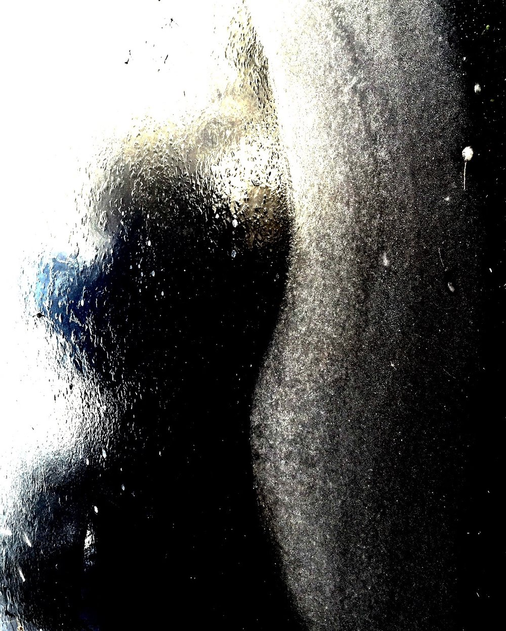 """ nascent "" © colin goedecke"