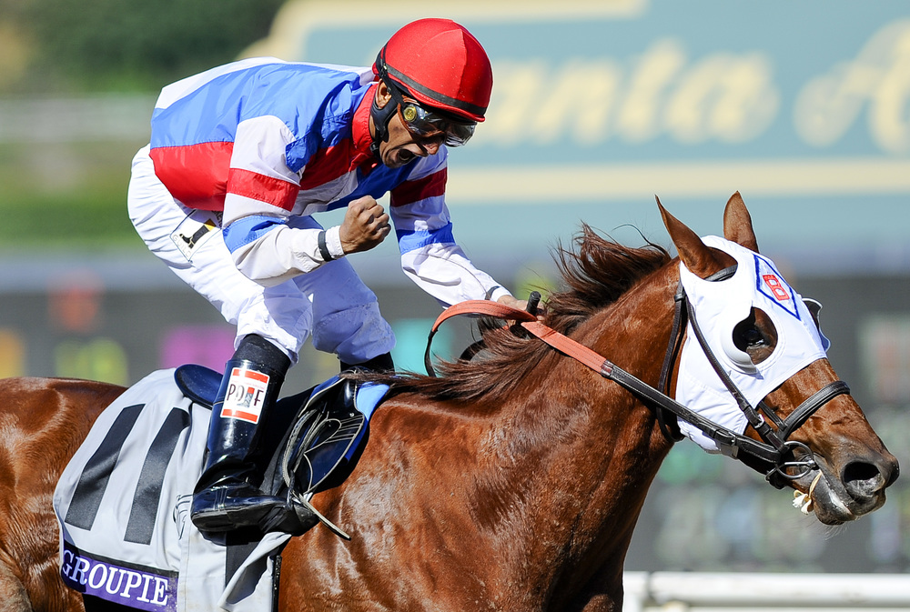 ARCADIA, CA     Rajiv Maragh, riding Groupie Doll, celebrates finishing first place in race six of the 2013 Breeders' Cup Championships.