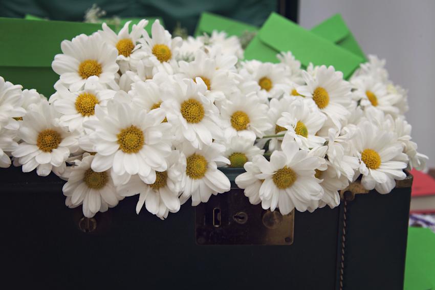 A mala trazida pela noiva de NY, virou suporte pros envelopes com recadinhos dos convidados para os noivos, além de virar vaso para as margaridas.