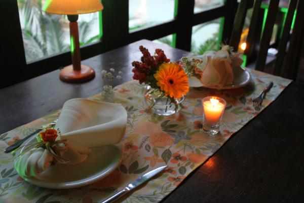 Caminho de mesa e porta-guardanapo