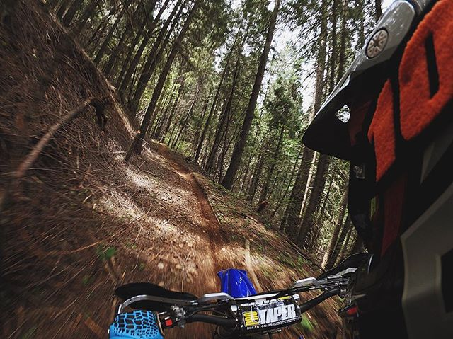 Single track for miles 👊🏻 • • • • #california #singletrack #dirtbike #motocross #ride100percent #trailboundco #brap #gopro #hero6 #vsco