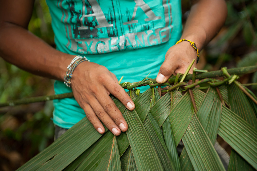 Hernando Tapullima, who leads eco-tours through the Amazonian village of Puerto Prado, demonstrates the process for weaving leaves to use in homes.
