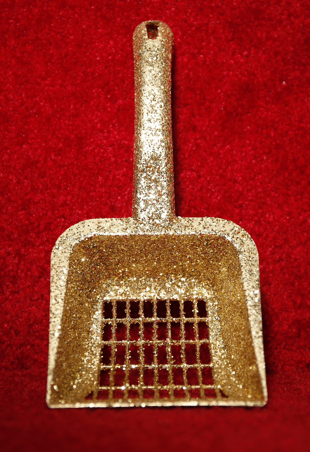 Golden Litter Scoop on Red Carpet copy.jpg