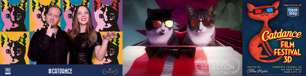 Catdance_Banner_21.jpg