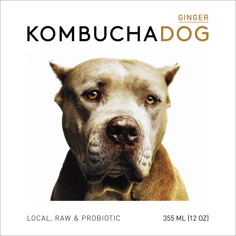 Kombucha Dog Ginger front label