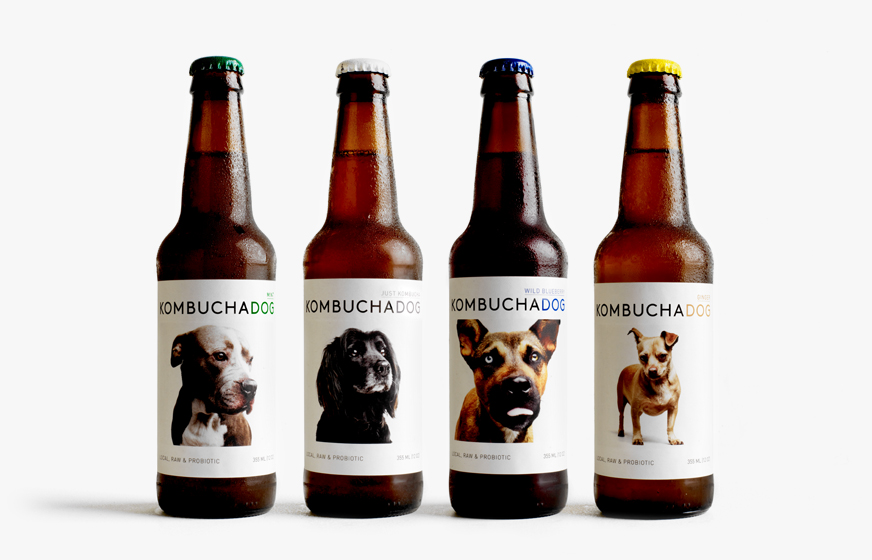 Four bottles of four flavors of Kombucha Dog