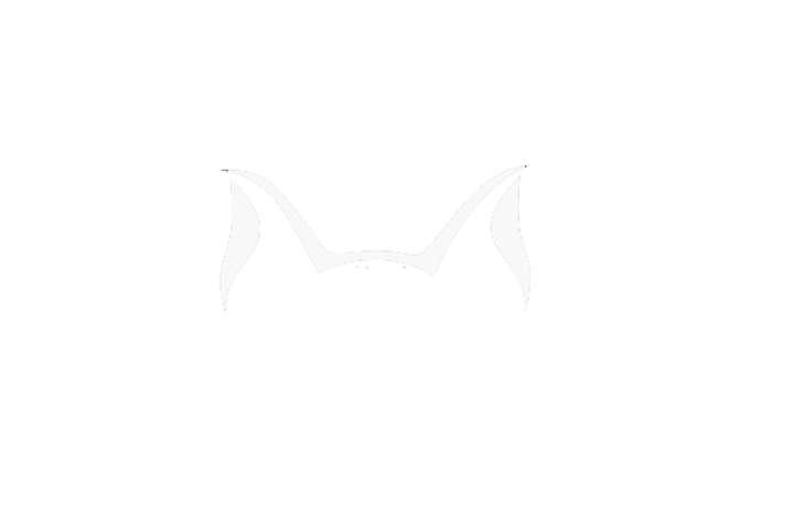 Brave Cat Productions