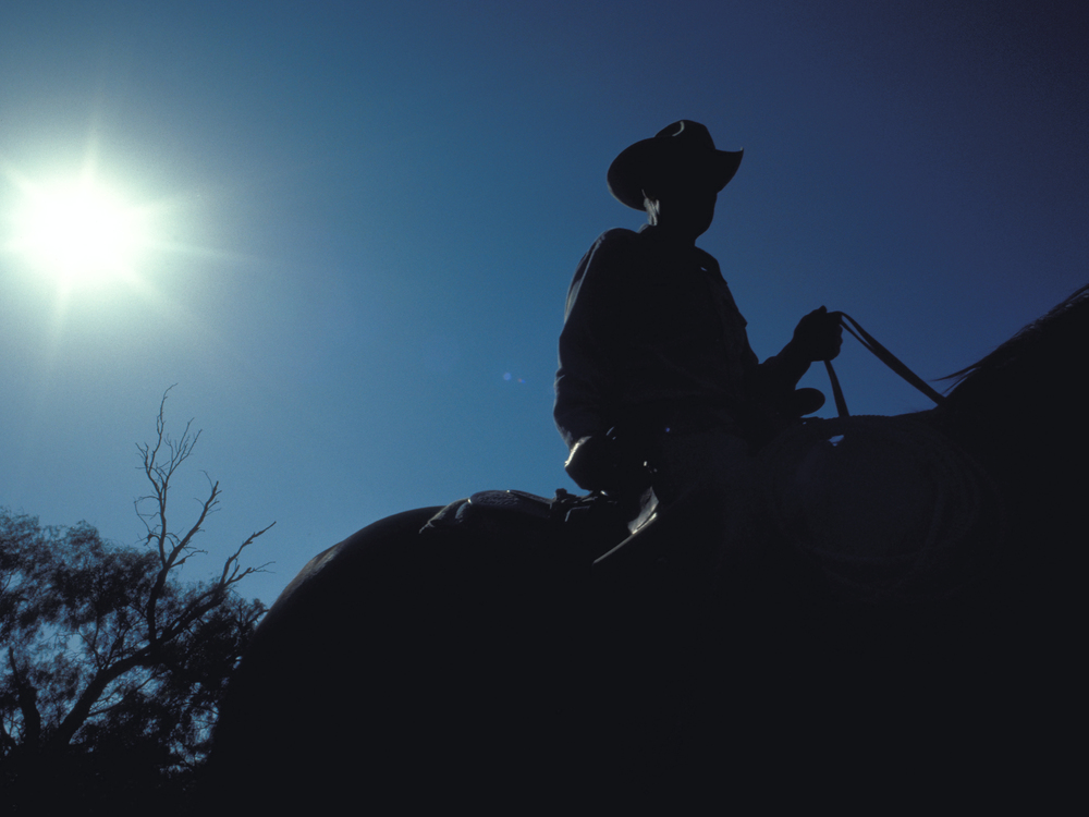 Cowboy heading out to round up cattle for branding Copyright © Kipp Baker, All rights reserved