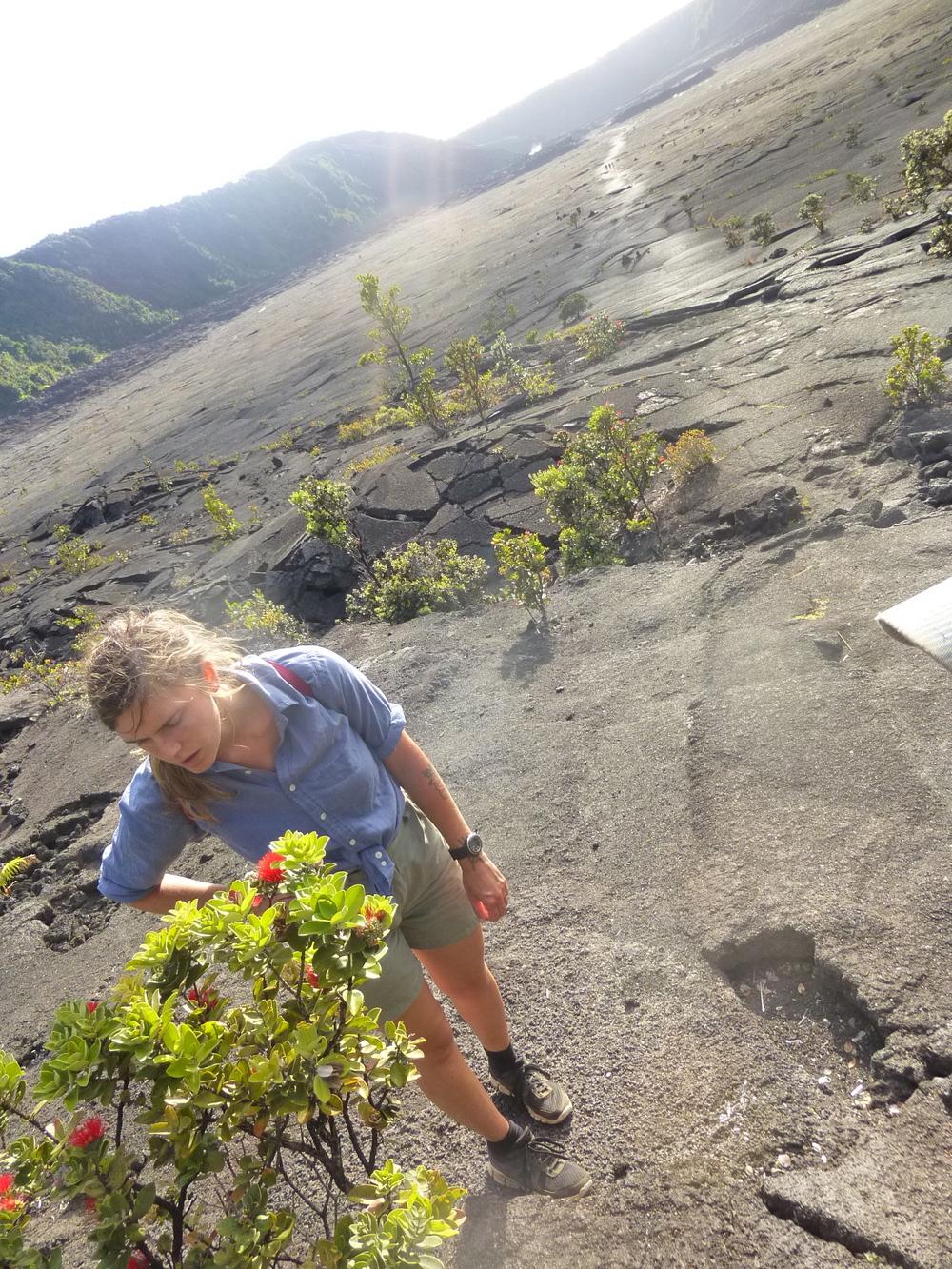 Aidan & Ohia, Kilauea iki, HAVO, Big Island.