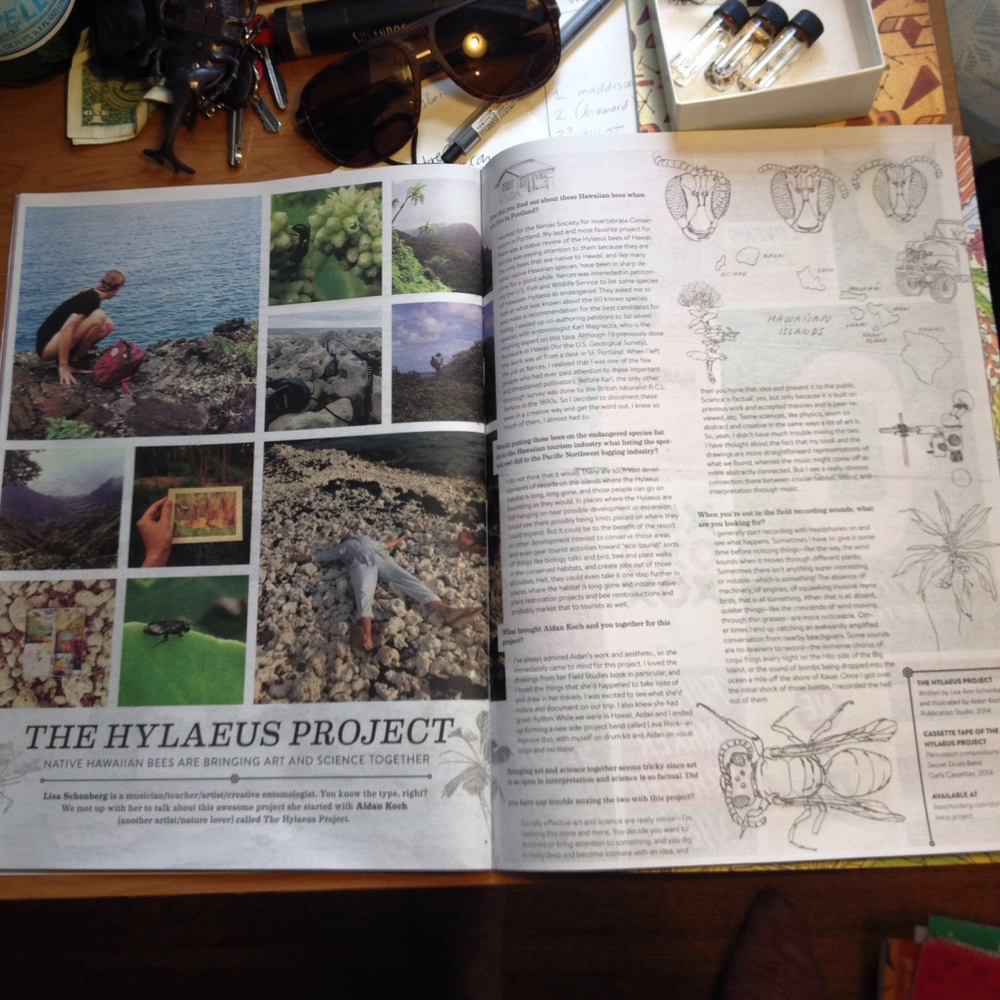The Hylaeus Proj in Stay Wild Magazine