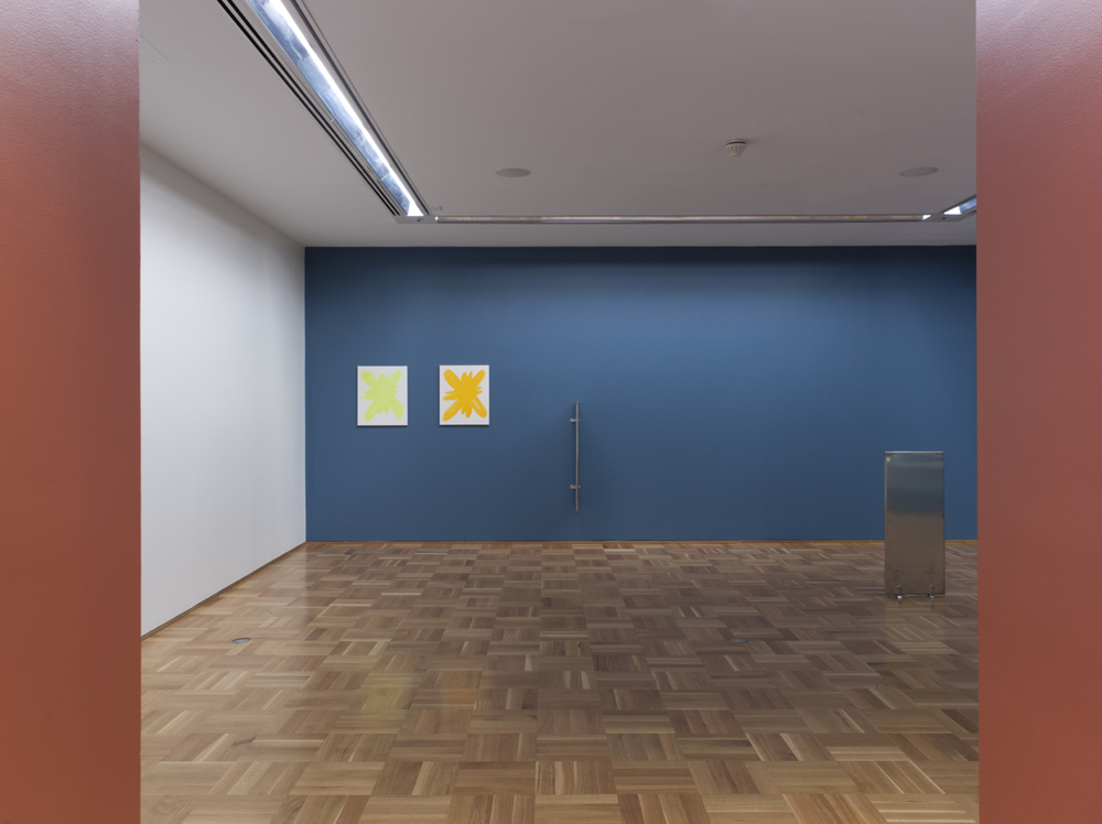Paul Cowan 2012   Museum of Contemporary Art, Chicago   Installation view