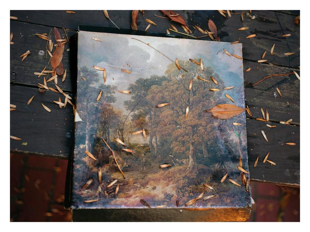 Margarete Jakschik  Untitled  2011 C-print 15h x 20w in Edition of 5 MJ013