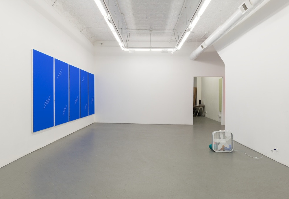 Paul Cowan Pallarel Procssieng 2013-2014 Shane Campbell Gallery, Chicago Installation View