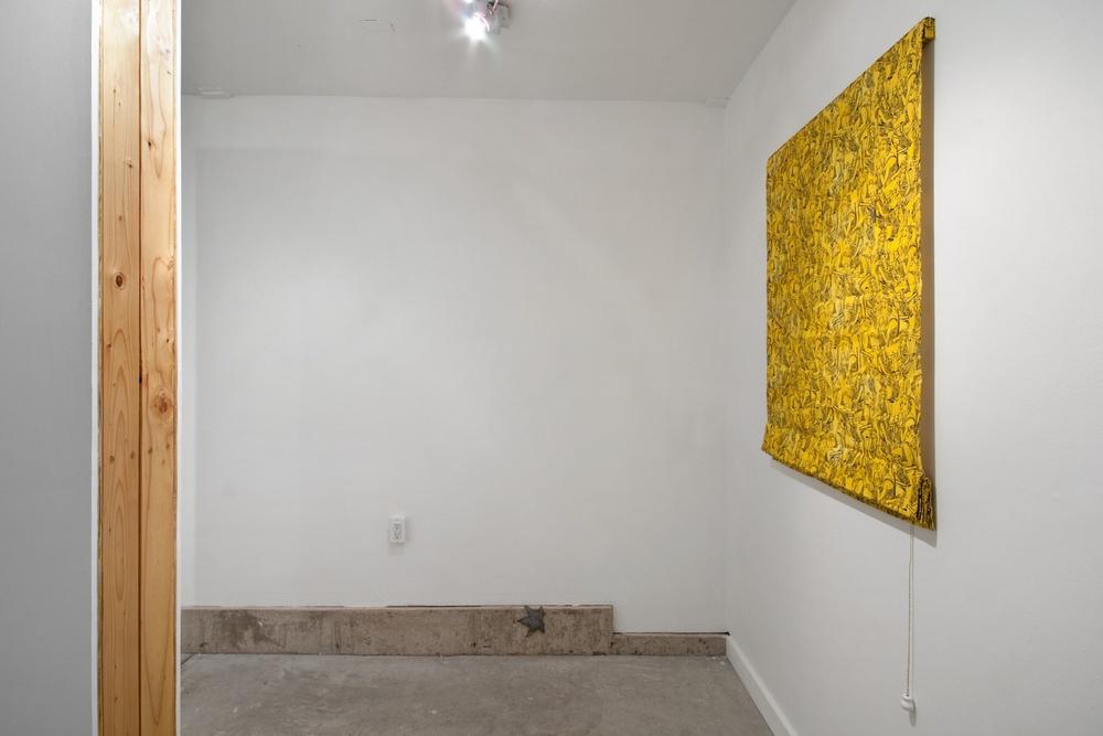 Paul Cowan, Brendan Fowler 2013 Shane Campbell Gallery, Oak Park Installation View
