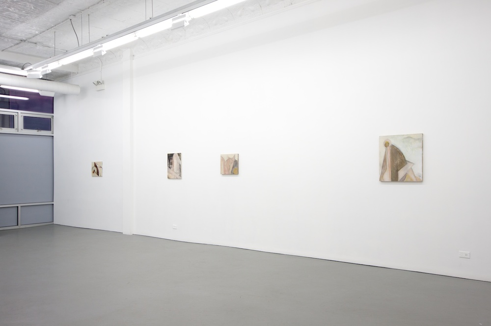 Lily Ludlow 2012 Shane Campbell Gallery, Chicago Installation View