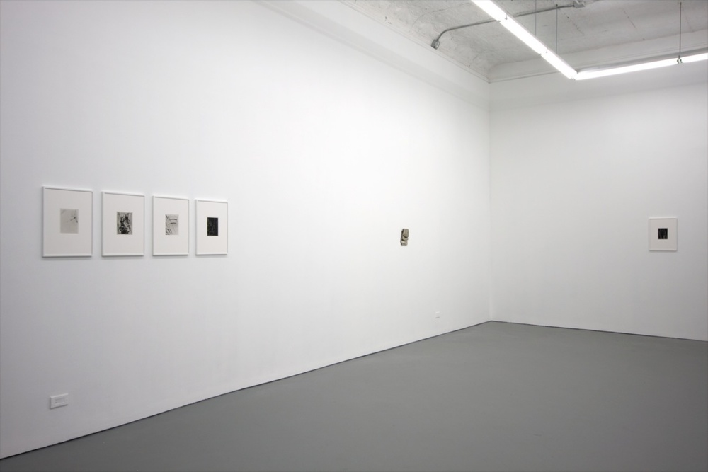 Anthony Pearson 2010 Shane Campbell Gallery, Chicago Installation View