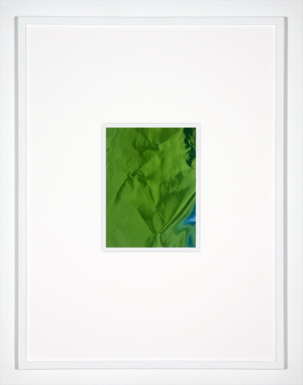 "Anthony Pearson Untitled (Hybrid) 2010 Framed color photograph 17"" x 12"" AP251"