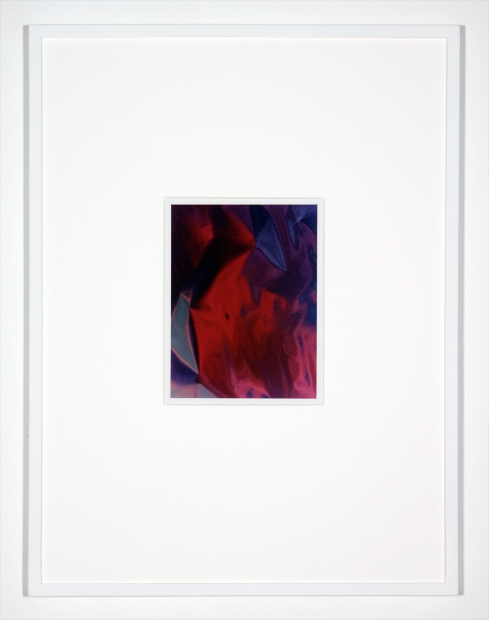 "Anthony Pearson Untitled (Hybrid) 2010 Framed color photograph 17"" x 12"" AP254"