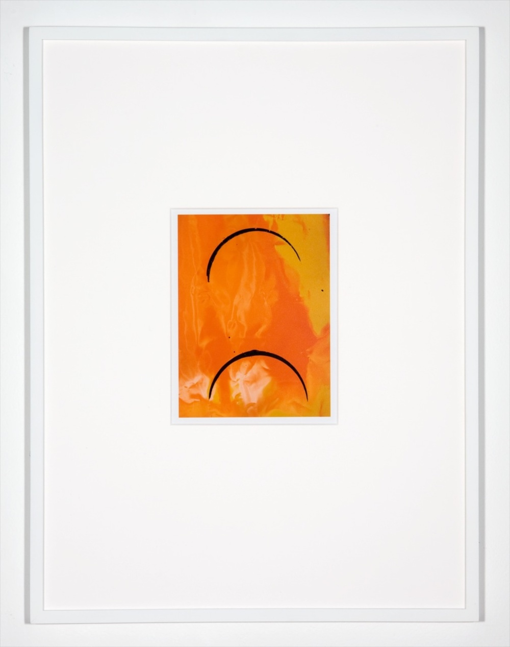 "Anthony Pearson Untitled (Hybrid) 2010 Framed color photograph 17"" x 12"" AP255"