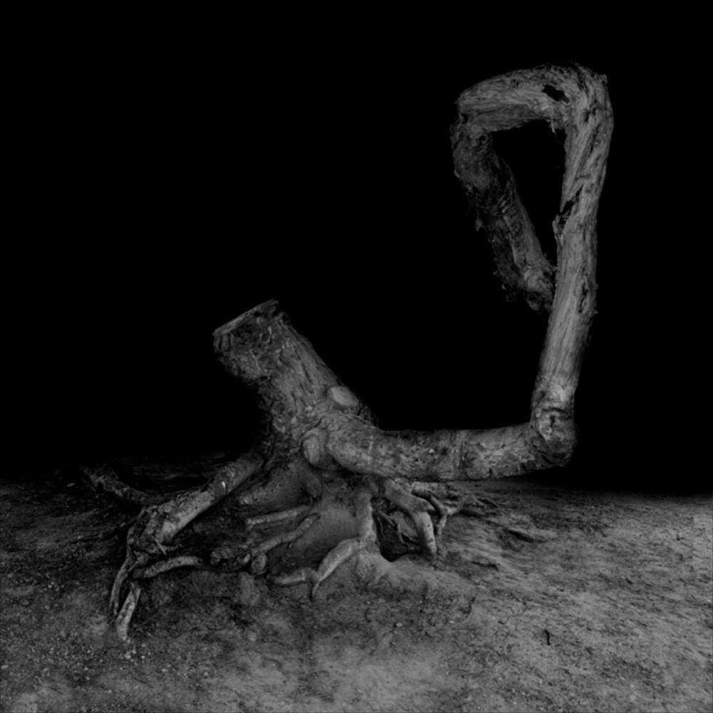 Amir Zaki  Artwork #4  2007 Ultrachrome archival photograph 22 ½h x 22 ½w in AZ001