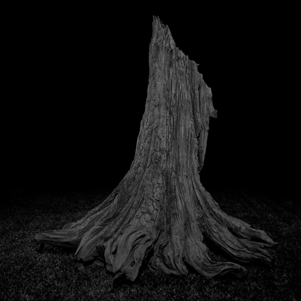 "Amir Zaki At What Point is the Wax No Longer Wax #8 2007 Ultrachrome archival photograph 22 1/2"" x 22 1/2"" AZ006"