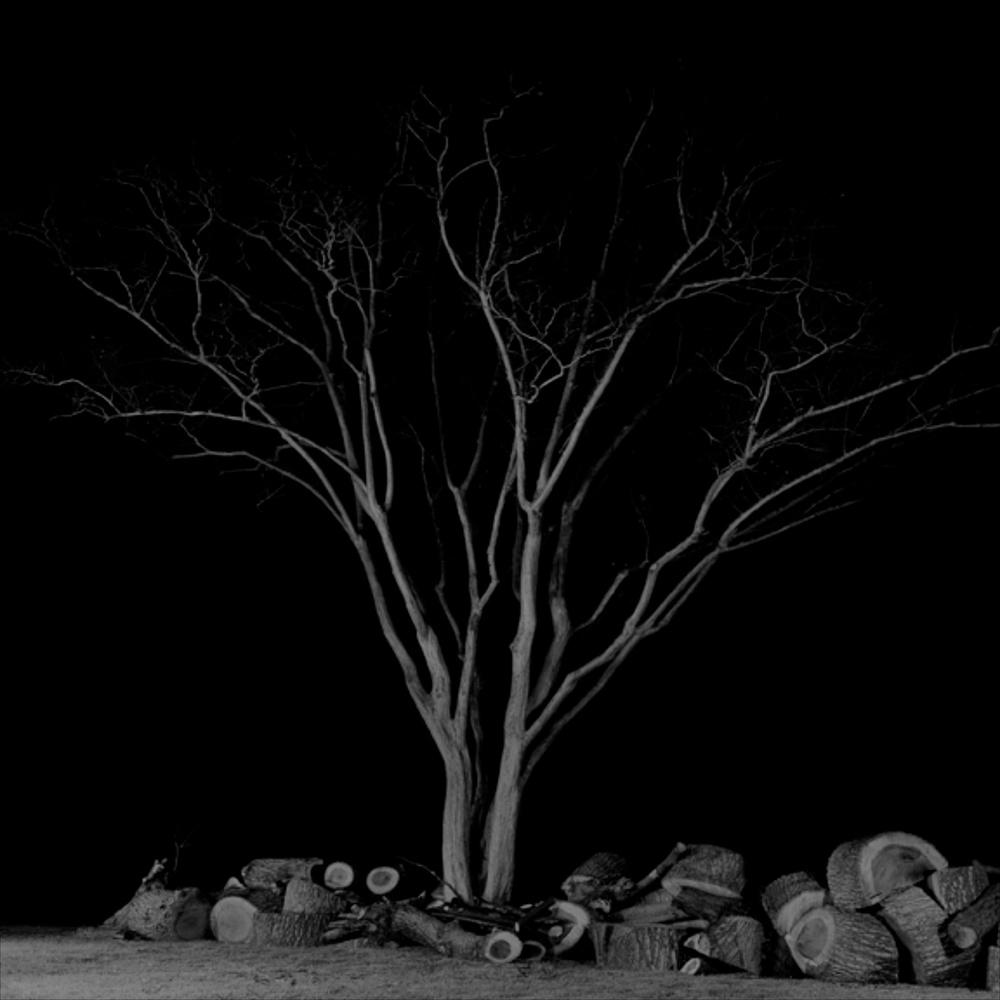 """Amir Zaki Artwork #7 2007 Ultrachrome archival photograph 22 1/2"""" x 22 1/2"""" AZ003"""