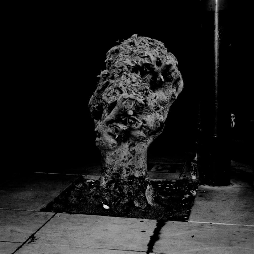 """Amir Zaki Artwork #13 2007 Ultrachrome archival photograph 22 1/2"""" x 22 1/2"""" AZ004"""