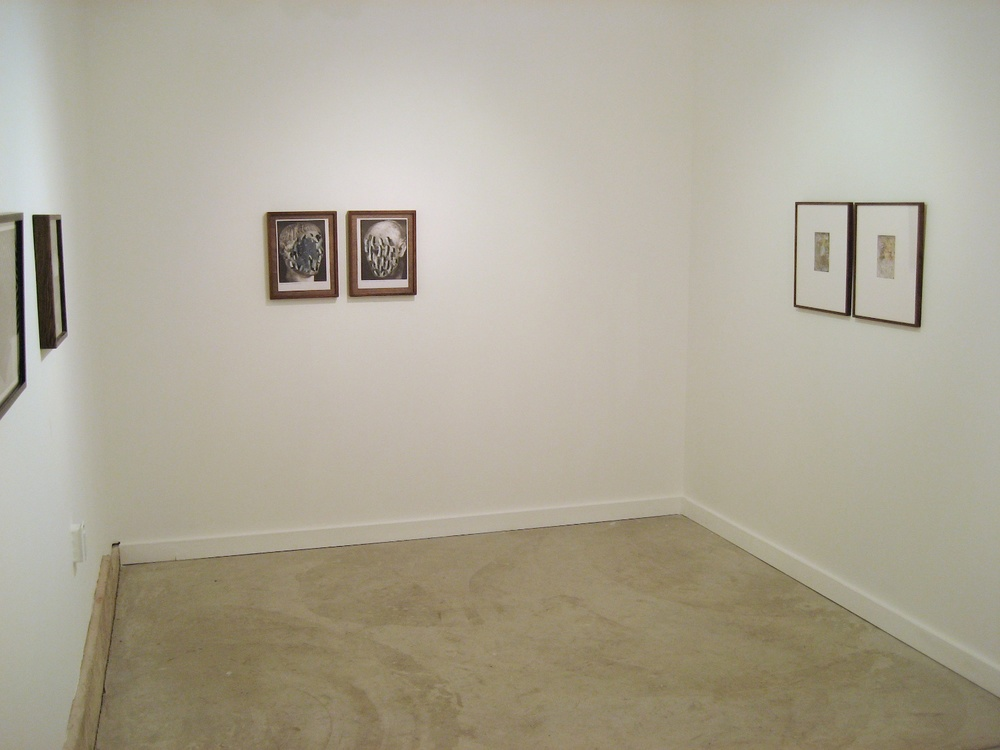 Aaron Curry, Niles Fairman, Nathan Hylden,  David Noonan, Sterling Ruby Material Photographs organized by Anthony Pearson 2007 Shane Campbell Gallery, Oak Park Installation View