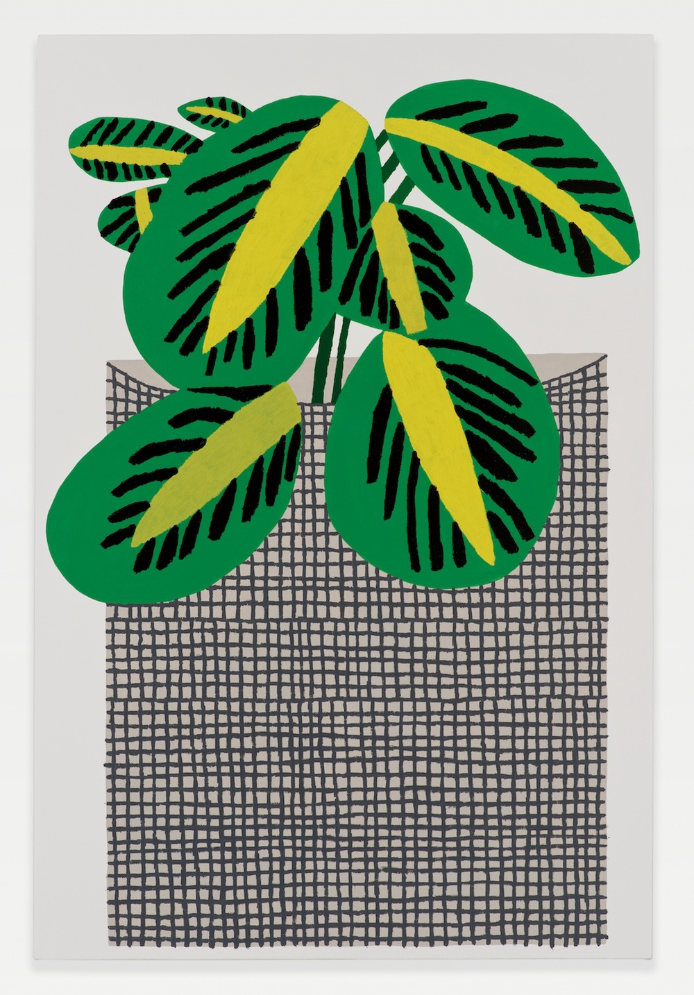 "Jonas Wood Kiwi Plant with Grid Pot 2014 Oil and acrylic on linen 36"" x 24"""