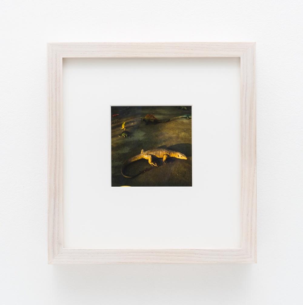 """Nobuyoshi Araki Object 2006-2009 Polaroid 4 ¼""""x 3 ½"""" NA006"""