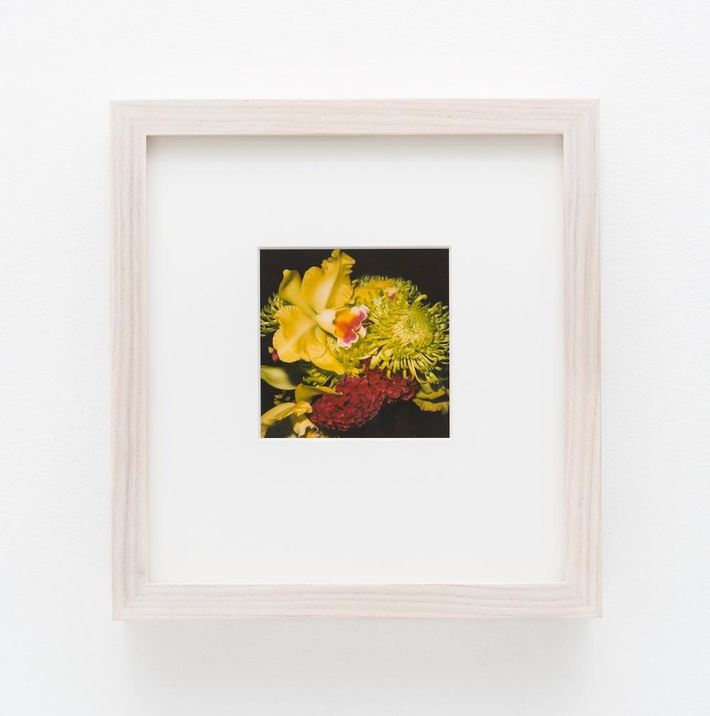 """Nobuyoshi Araki Flower 2006-2009 Polaroid 4 ¼""""x 3 ½"""" NA035"""