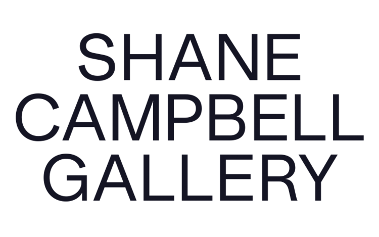 SHANE CAMPBELL GALLERY