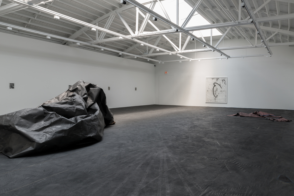 Tony Lewis Pall 2015 Shane Campbell Gallery, Chicago Installation View