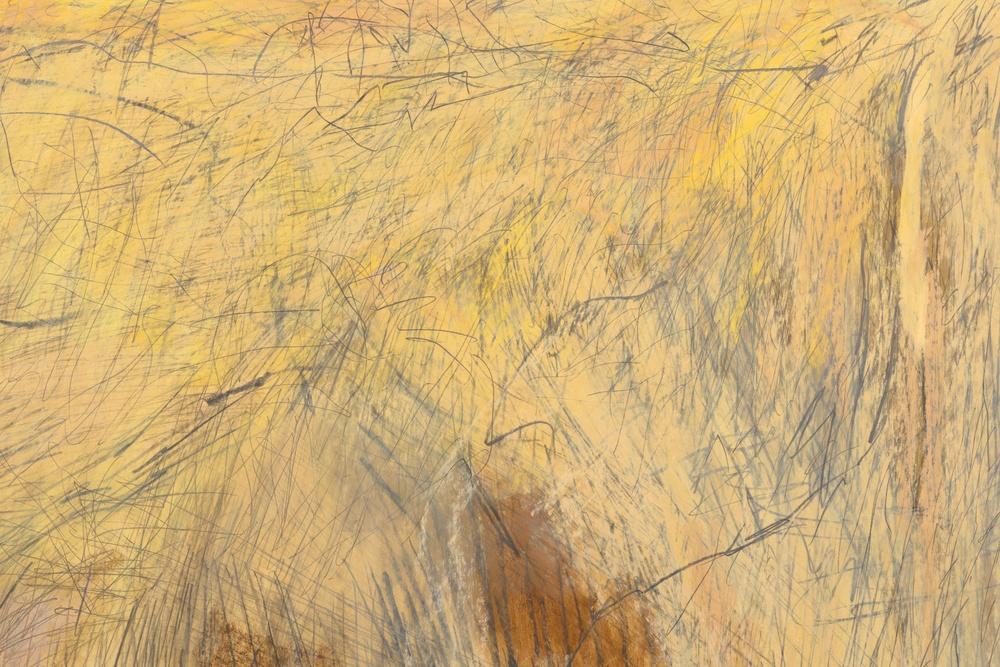 Mimi Lauter  A Lone Performer  (Detail) 2015 Soft pastel, oil pastel on paper 77 ⅜h x 60w in (artwork); 82h x 64 ¾w x 3d in (framed) MLaut043