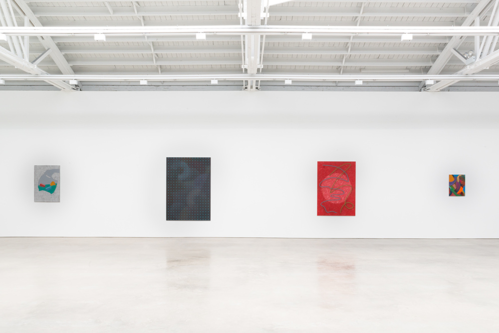 Alex Olson Loose Is Vision 2015 Shane Campbell Gallery, Chicago Installation View