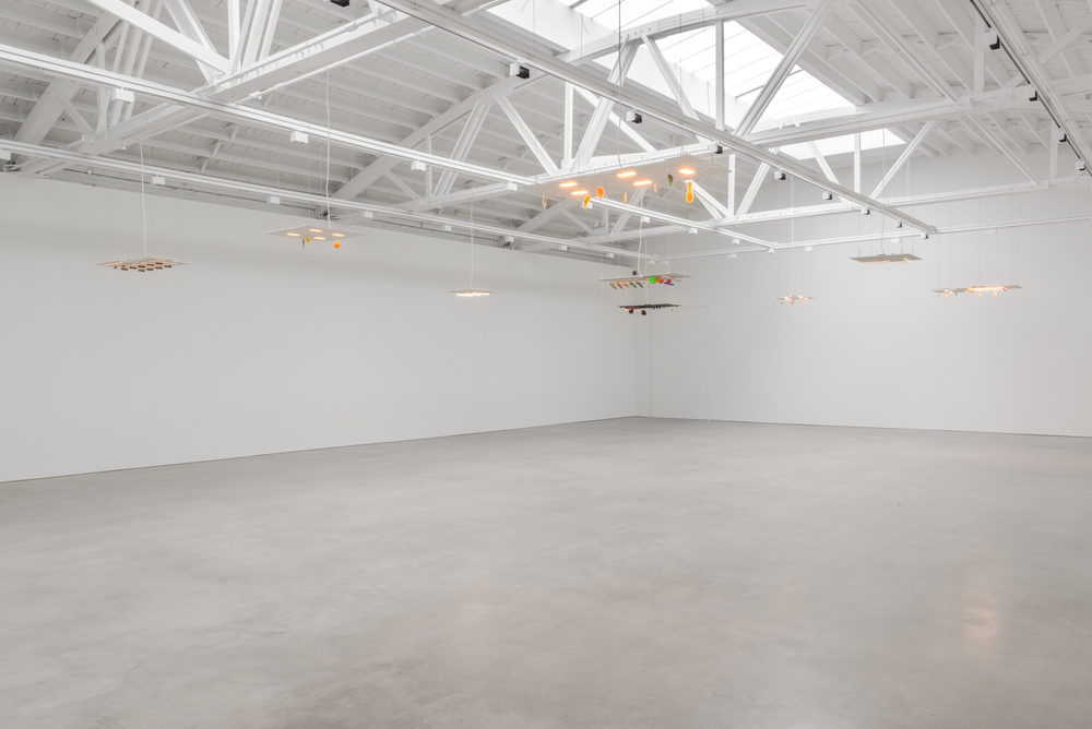 Chris Bradley   Ceilings   2016   Shane Campbell Gallery, South Loop   Installation view
