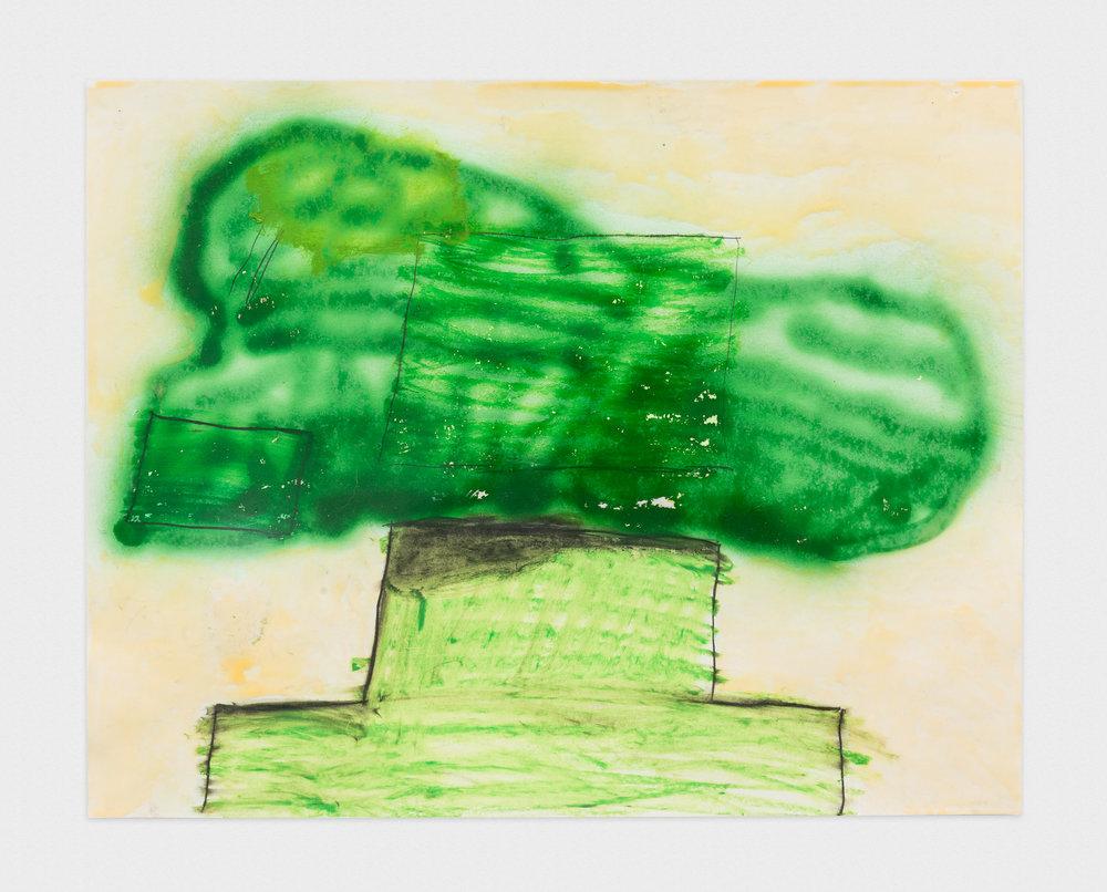 Torey Thornton Eco Foot Print 2014-2015 Mixed media on paper 22 x 28 in (artwork); 24 x 30 in (framed) TT015