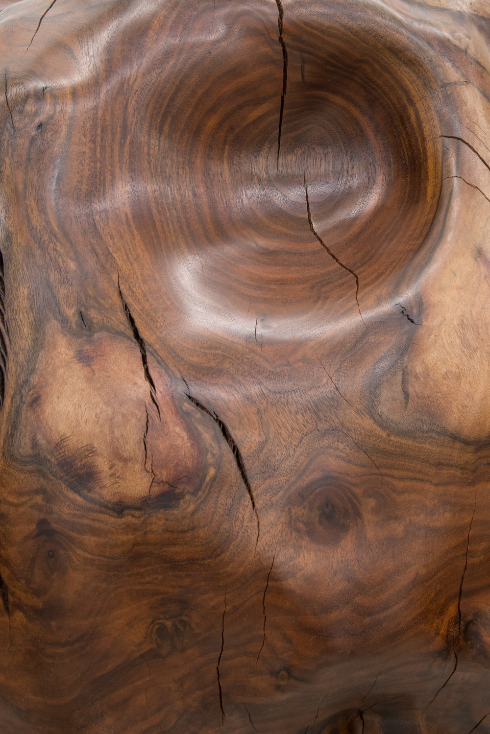 Alma Allen  Not Yet Titled  (Detail) 2016 Claro walnut 30h x 28w x 22d in AA046