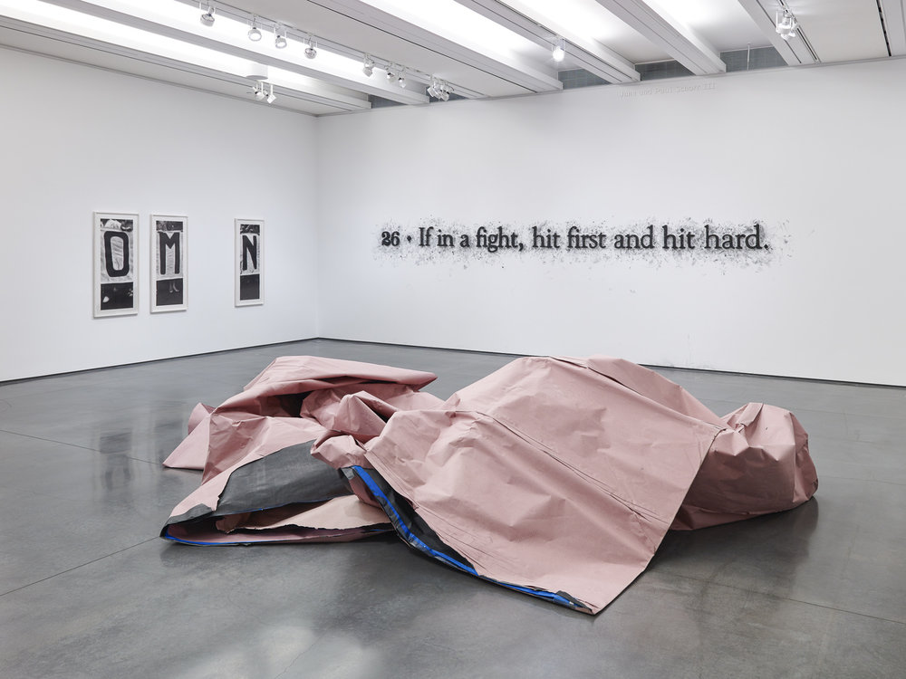 Tony Lewis The Revolution Will Not be Gray Aspen Art Museum 2016 Installation view