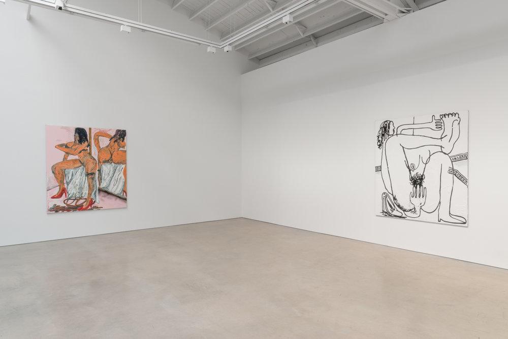 Alex Becerra  Sueños Eróticos  2016 Installation view Shane Campbell Gallery, South Loop