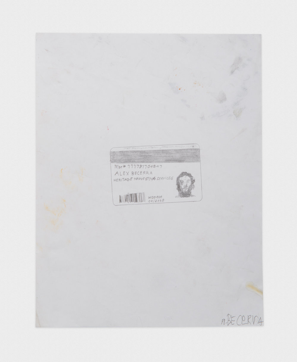 Alex Becerra  Costco Card I.D.  2016 Graphite on paper 11h x 8 1/2w in AB431