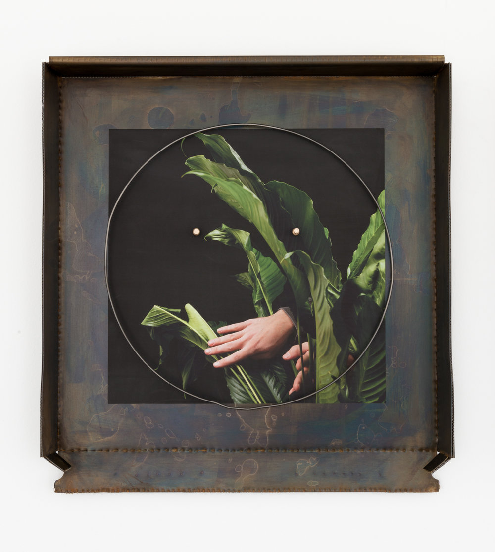 Chris Bradley  Grease Face (Spathiphyllum Swim)  2017 Patinated steel, aluminum, cast bronze, ink jet print on vinyl, hub cap ring, and lacquer 21 ¼h x 19 ½w x 2d in CB244