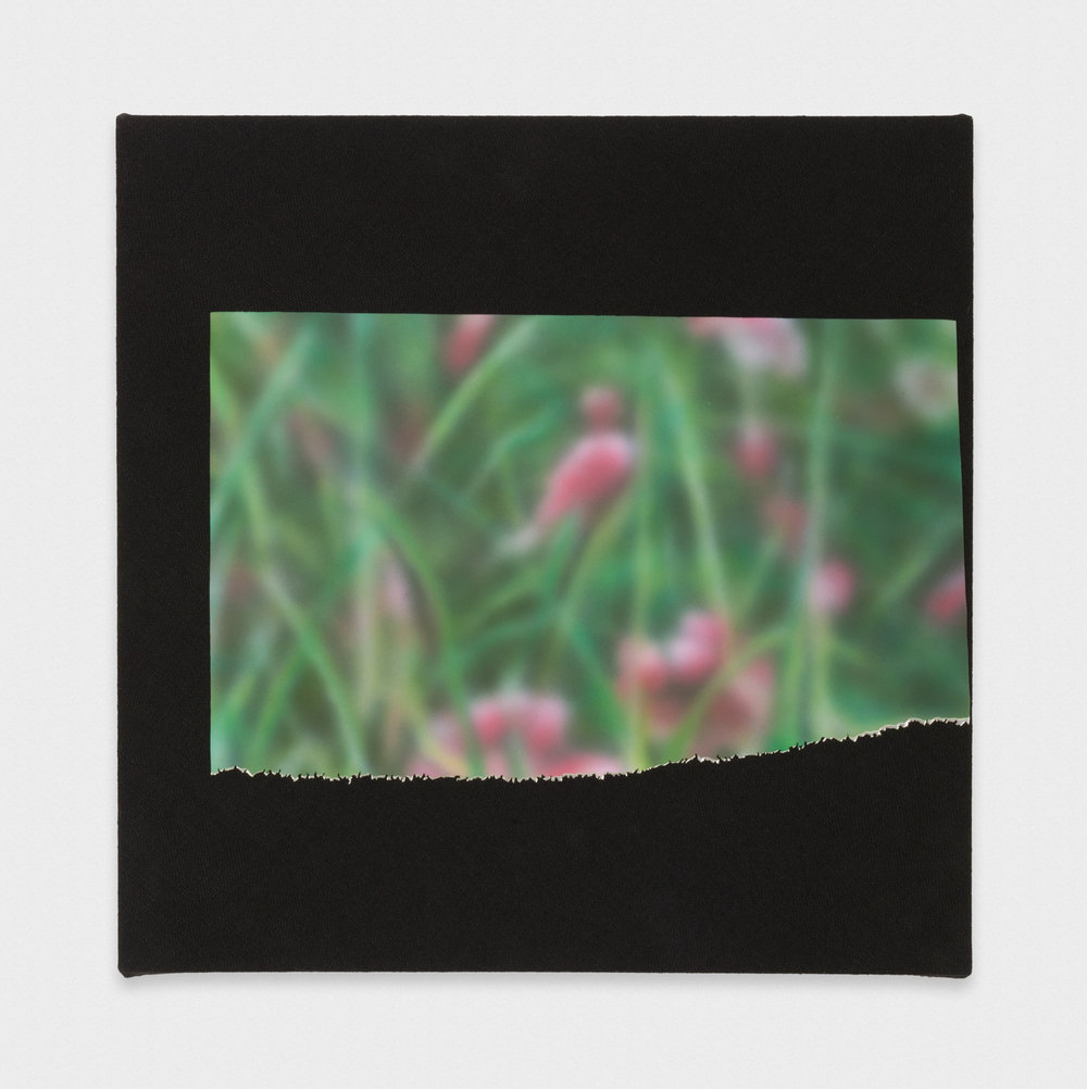Kim Fisher Magazine Painting (Flowers in the Rain) 2017 Oil on aluminum on dyed linen on panel 20 x 20 in (50.8h x 50.8w cm) KF035