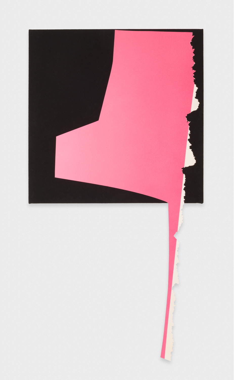 Kim Fisher  Magazine Painting (Long Foot Pink)  2017 Oil on aluminum on dyed linen on panel 68h x 38w in KF030