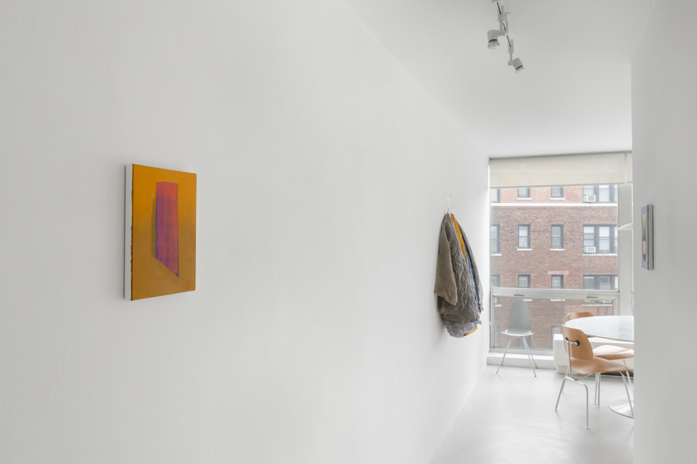 Slip Cover  2017 Installation view Shane Campbell Gallery, Lincoln Park