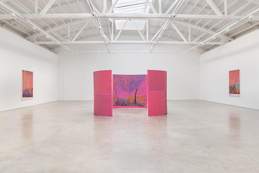 John McAllister botanic haunting soft-static 2017 Shane Campbell Gallery, South Loop Installation view