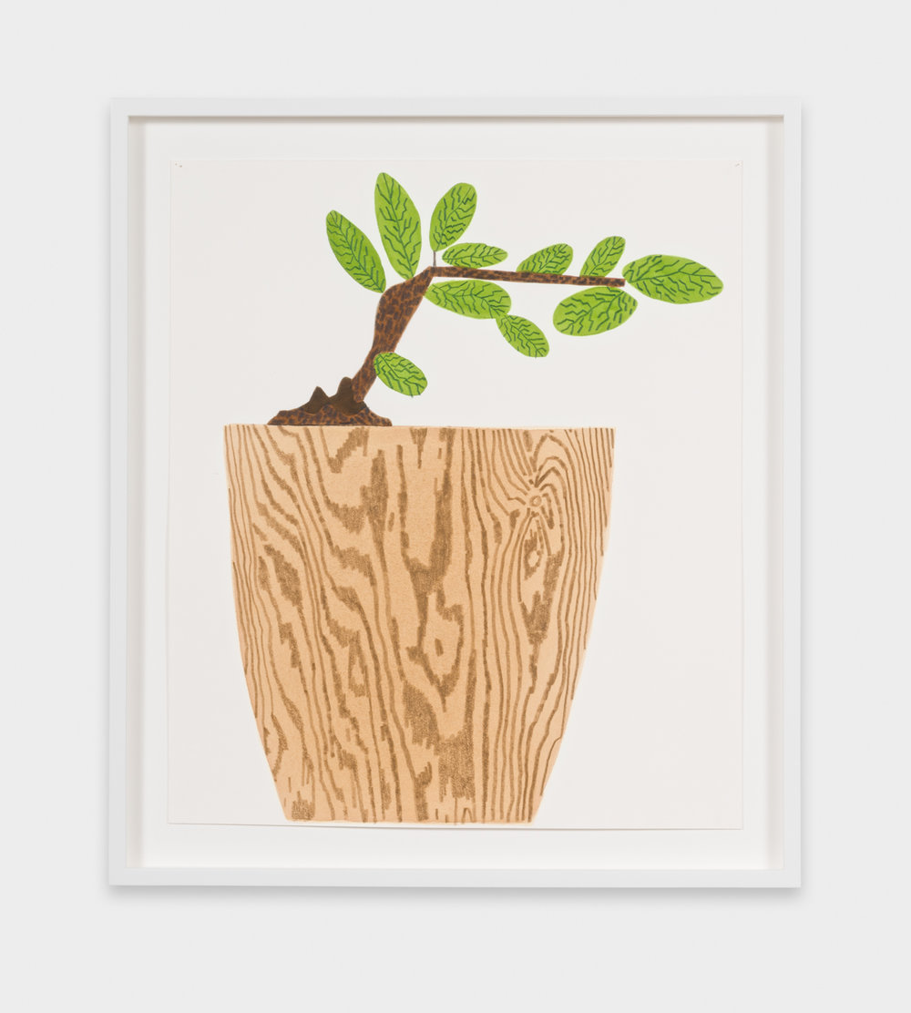 Jonas Wood  Wood Grain Pot With Japanese Plant #1  2016 Gouache and colored pencil on paper 20h x 17w in JW242
