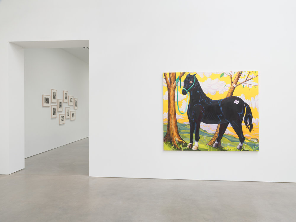 Nikki Maloof Separation Anxiety 2018 Shane Campbell Gallery, South Loop Installation view